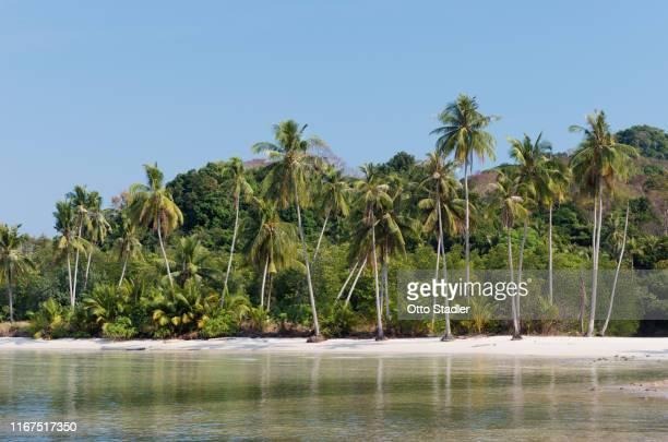 unspoiled beach on ko kut island - golf von thailand stock-fotos und bilder