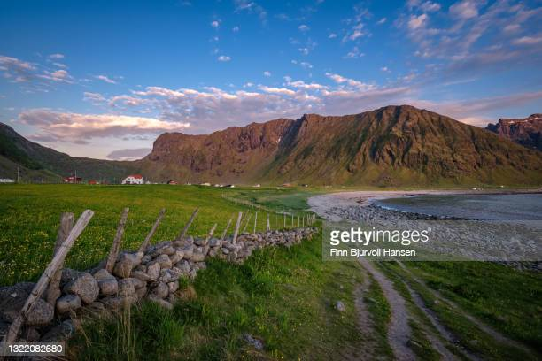 unstad, lofoten, norway, europe - stone fence at unstad beach. - finn bjurvoll stock pictures, royalty-free photos & images