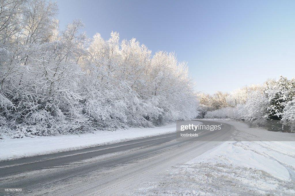 加工 Road に雪れたツリー : ストックフォト