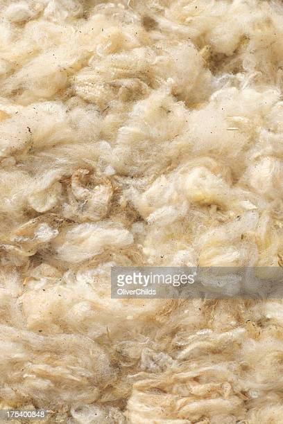 Untreated wool.