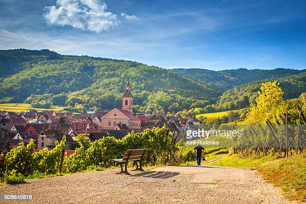 Unusual view of village of Riquewihr, Alsace, France