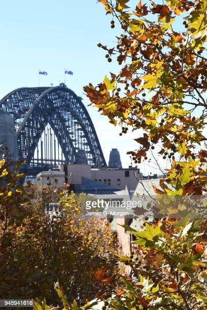 Unusually hot weather for Autumn hits the city on May 16 2016 in Sydney Australia Areas around the city including the Opera House and Harbour had...