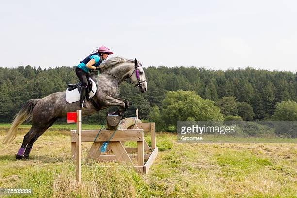 up and over. - equestrian event stock pictures, royalty-free photos & images