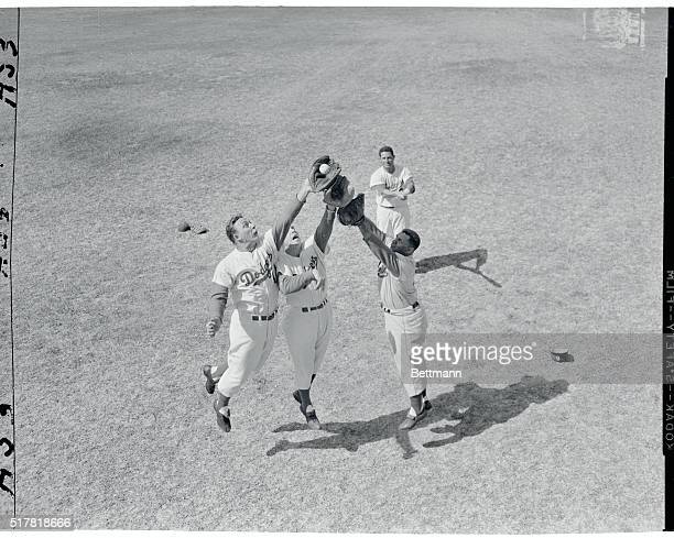 Up in the air over this thing called spring training are Dodgers Gil Hodges, Capt. Peewee Reese and Roy Campanella. They are going after a high drive...