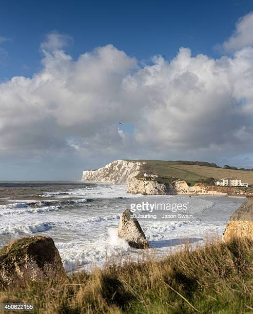 up on the cliffs at freshwater bay - s0ulsurfing stock pictures, royalty-free photos & images