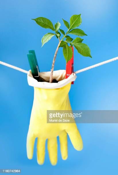 upcycling/recycling - ゴム手袋 ストックフォトと画像