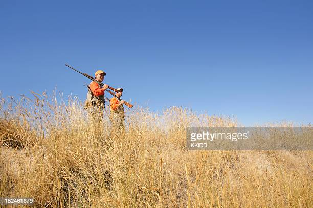upland game hunting - quail bird stock photos and pictures