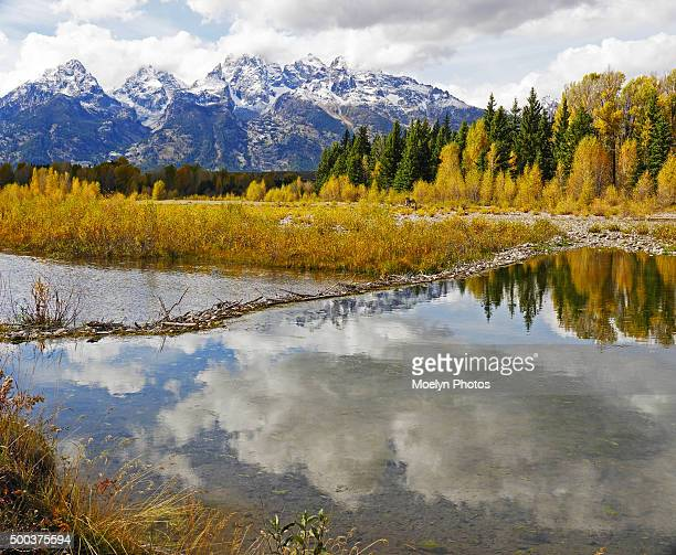 upper schwabacher in the grand tetons - beaver dam stock pictures, royalty-free photos & images