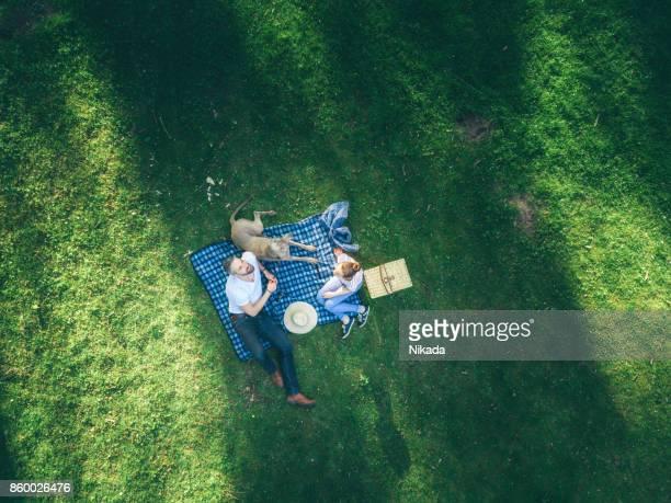 obere ansicht von glücklicher vater mit tochter im teenageralter und hund liegend auf einer decke in einem park - drohnenperspektive stock-fotos und bilder