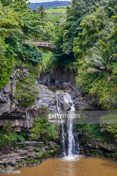 upper waterfall at seven sacred pools,kipahulu visitor centre,maui,hawaii,usa - hannah brooks stock pictures, royalty-free photos & images