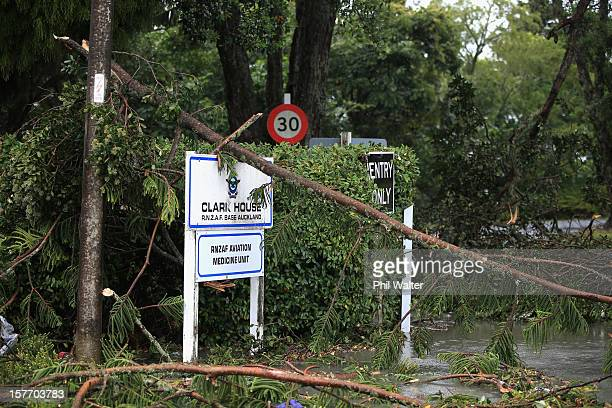 Uprooted trees and storm debri are scattered around the Auckland suburb of Hobsonville in the aftermath of a tornado that struck on December 6 2012...