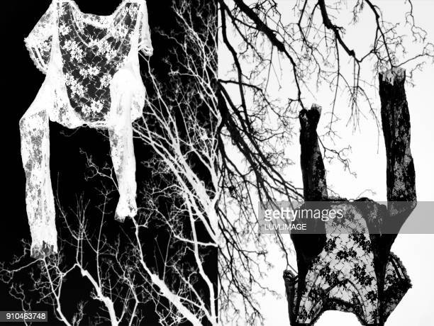 upside down. - down blouse stock pictures, royalty-free photos & images