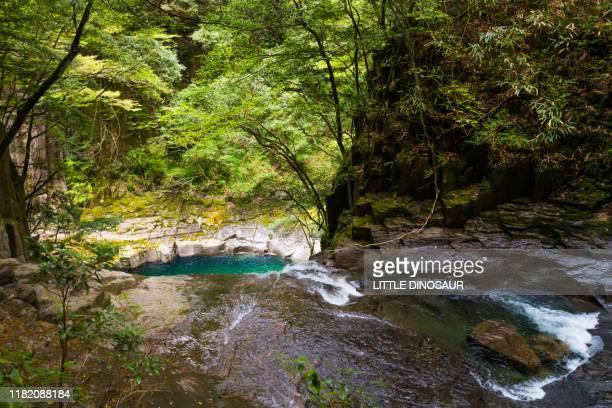 upstream of nunobiki-daki, akame 48 waterfalls - 三重県 ストックフォトと画像