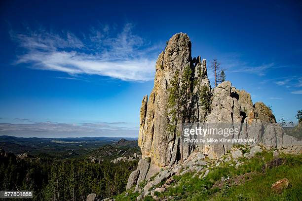 upward - black hills stock photos and pictures