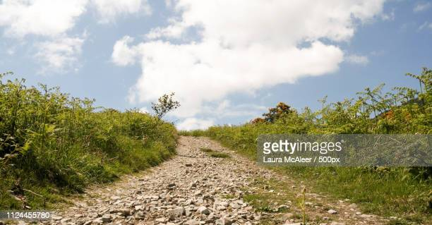 upwards path - laura woods stock pictures, royalty-free photos & images