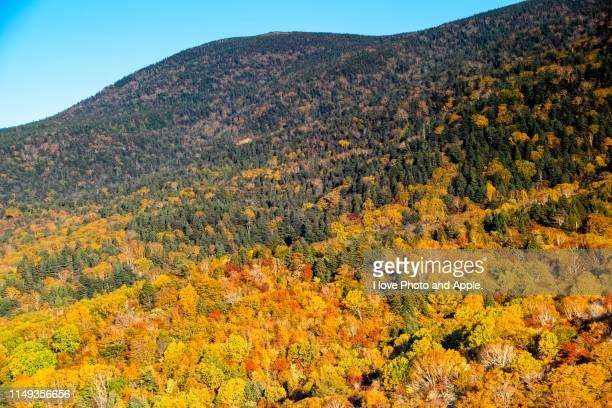 urabandai autumn scenery - 山形県 ストックフォトと画像