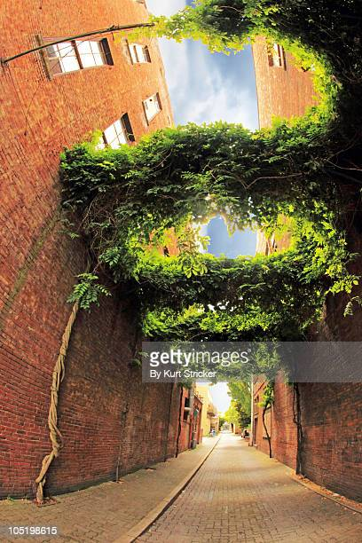 urban alley with red brick buildings and brick roa - salem oregon stock pictures, royalty-free photos & images
