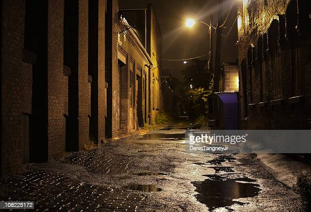 Urban Alleyway with Puddles at Night