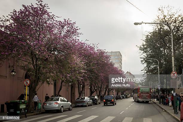 urban area of the city of cordoba - argentina - andres ruffo stock pictures, royalty-free photos & images