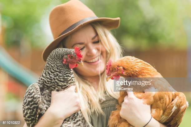 Urban Chicken Farm!