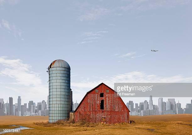 Urban Farm Fantasy