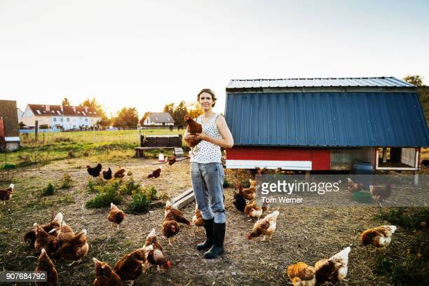 urban farmer in free range pen holding chicken - unabhängigkeit stock-fotos und bilder