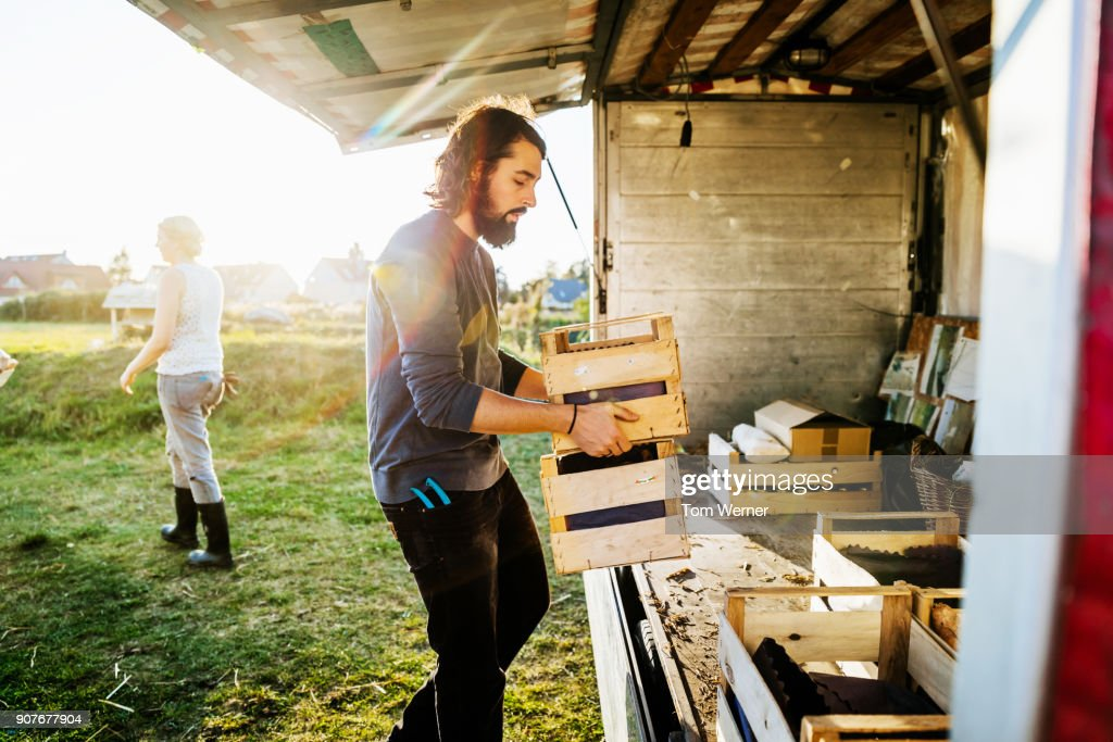 Urban Farmers Loading Truck With Freshly Harvested Goods : Stock Photo