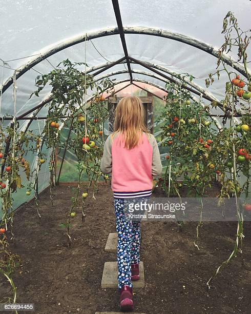 Urban Gardening from a Personal Perspective