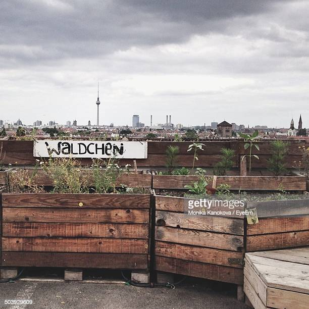 urban gardening with city against clouds in background - urban garden stock pictures, royalty-free photos & images