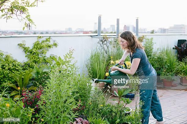 Potagers urbains : Femme se déverse plantes de jardin sur le toit