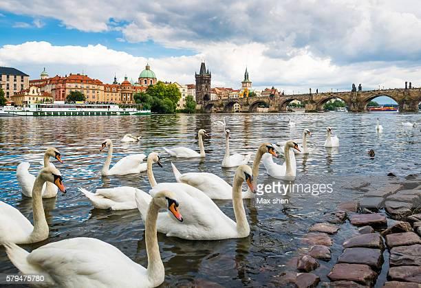 Urban landscape in Prague, Czech Republic.