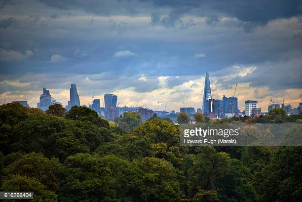 urban, rural and country landscapes of richmond park, london, uk - atmospheric mood stock pictures, royalty-free photos & images