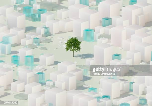 urban tree - sustainability stock pictures, royalty-free photos & images