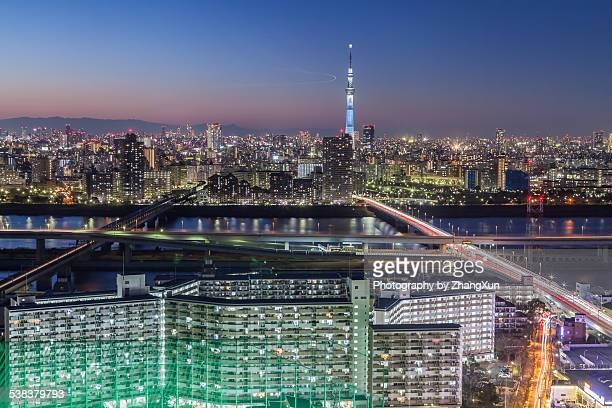 Urban view of Tokyo city at sunset