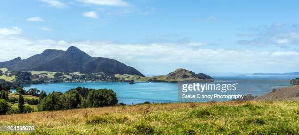 urquharts bay, whangarei heads. - northland new zealand stock pictures, royalty-free photos & images