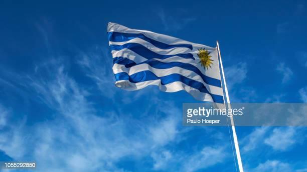 uruguayan flag - uruguai - fotografias e filmes do acervo