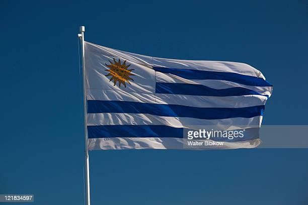 uruguayan flag, punta ballena, uruguay, february 2009  - uruguay stockfoto's en -beelden