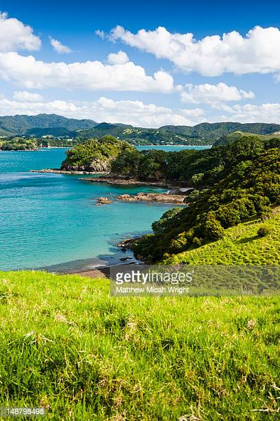 urupukapuka island is the largest of all the 144 islands in the bay of islands. the island is full of wonderful beaches and it is virtually desolate throughout most of the island. - north island new zealand stock pictures, royalty-free photos & images