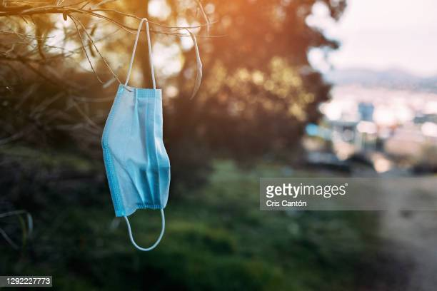 used surgical mask hanging from a tree on a field - cris cantón photography fotografías e imágenes de stock