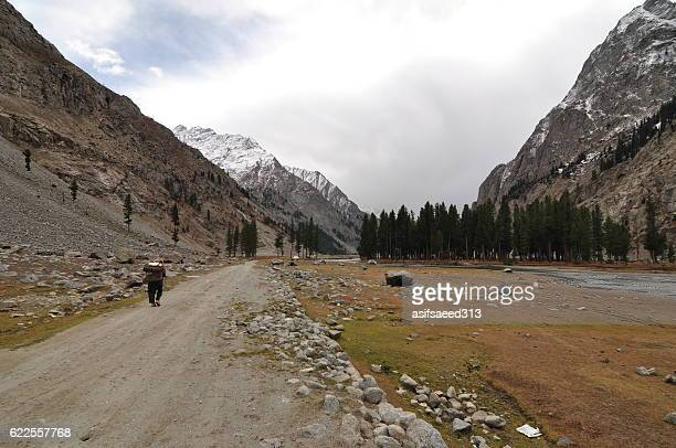 ushu valley trek - swat valley stock pictures, royalty-free photos & images