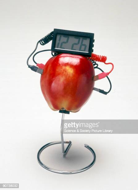 Using Alessandro Volta's original design for a battery this clock is powered by a fruit or vegetable which provides acid paste or electrolyte Volta...