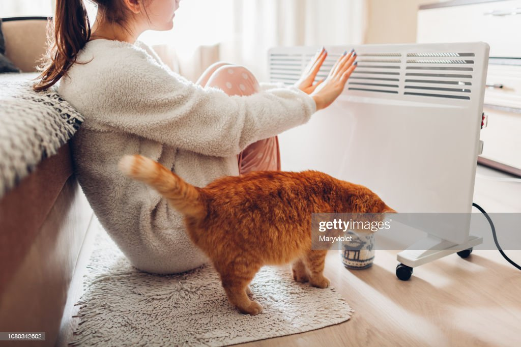 Using heater at home in winter. Woman warming her hands with cat. Heating season. : Stock Photo