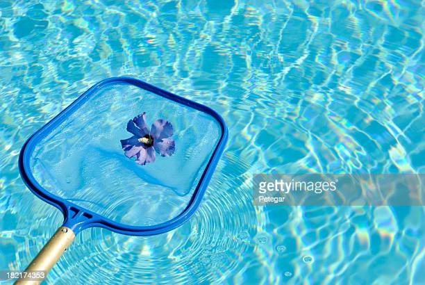 Using Net to Clean a Swimming Pool