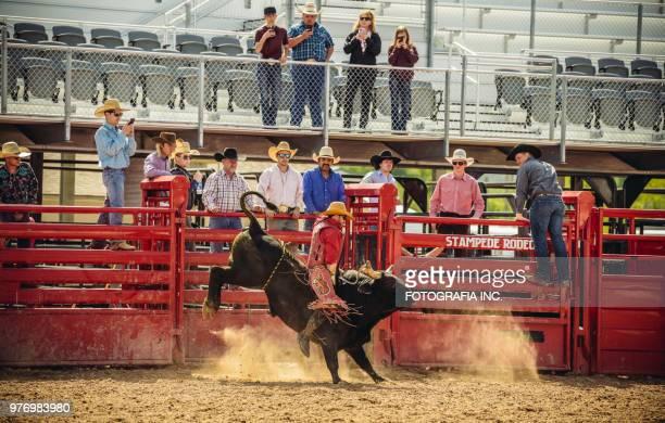 Utah bull riding rodeo