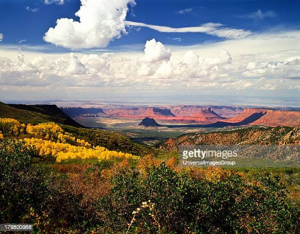Utah Castle Valley from the LaSal Mountains with Fall Color in the Valley and on the mountainside