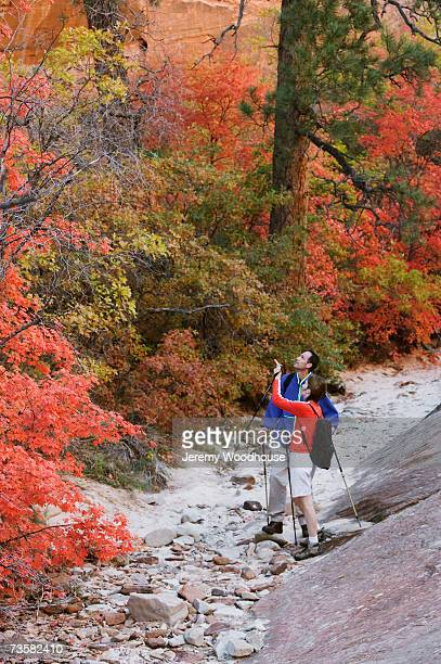 usa, utah, couple hiking in maple-lined canyon - jeremy woodhouse stock photos and pictures