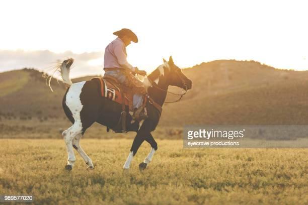 vaquero de utah occidental al atardecer al aire libre y rodeo estampida rodeo montar a caballo caballos de pastoreo de ganado - pantalón de cuero fotografías e imágenes de stock