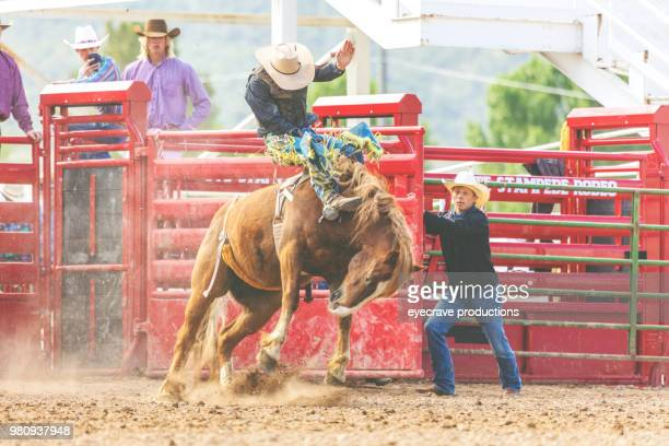 utah cowboy saddle bronc bareback riding western outdoors and rodeo stampede roundup riding horses herding livestock - bucking stock photos and pictures