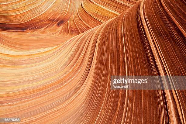 USA, Utah, Coyote Buttes, Wave