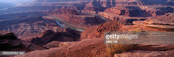 usa, utah, dead horse point canyon - dead horse point state park stock pictures, royalty-free photos & images